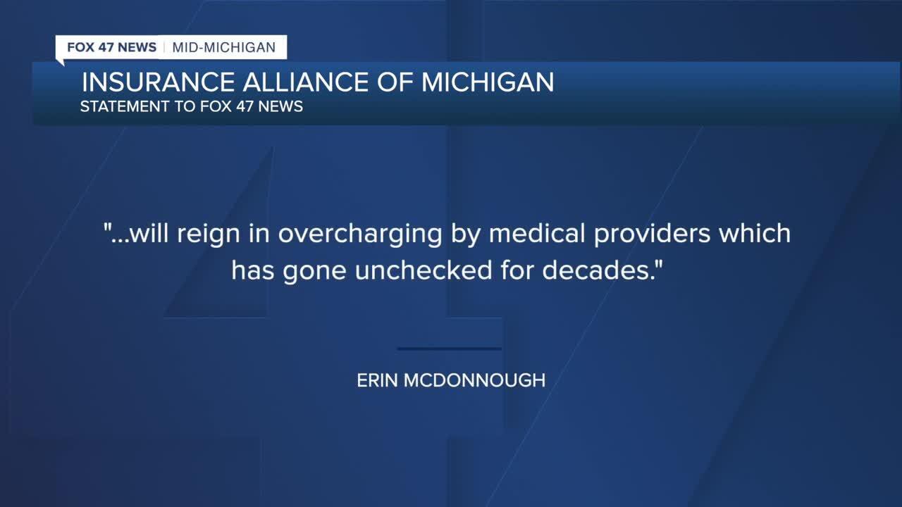 Erin McDonough Insurance Alliance of Michigan's executive director