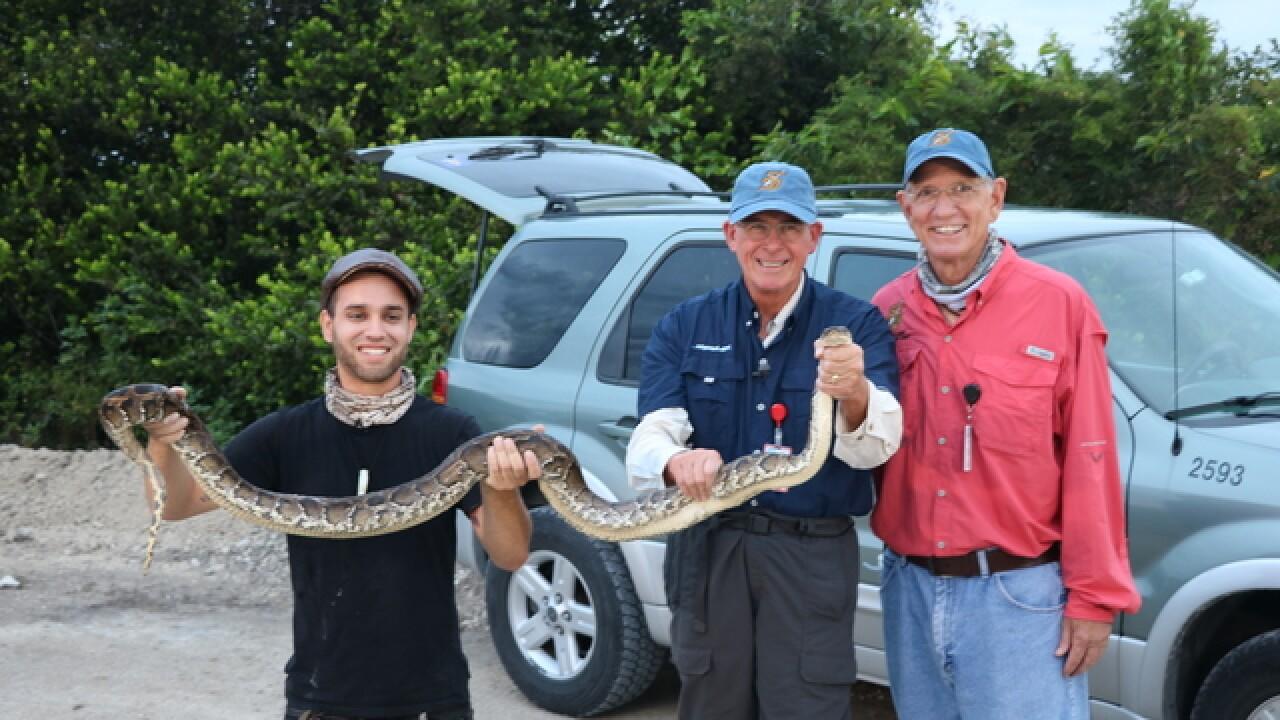 Congressman Rooney battles pythons in Everglades