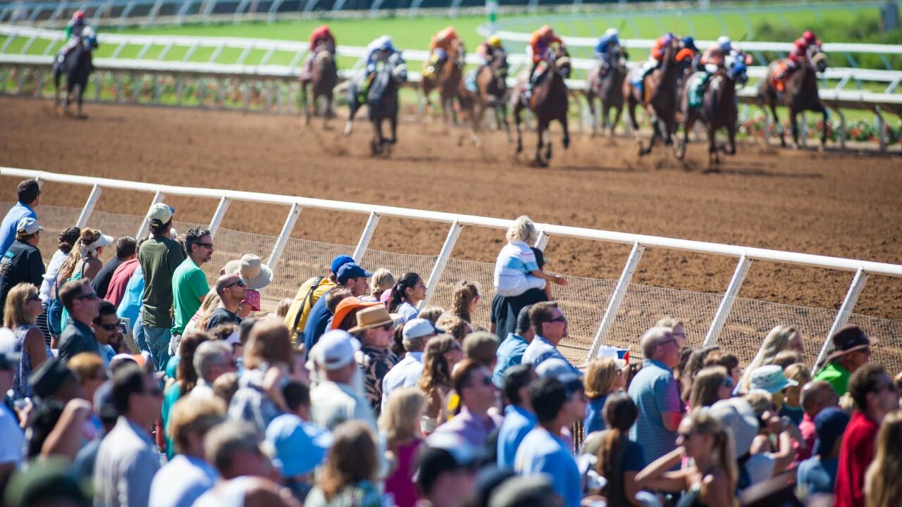 Racing_CrowdView1.jpg