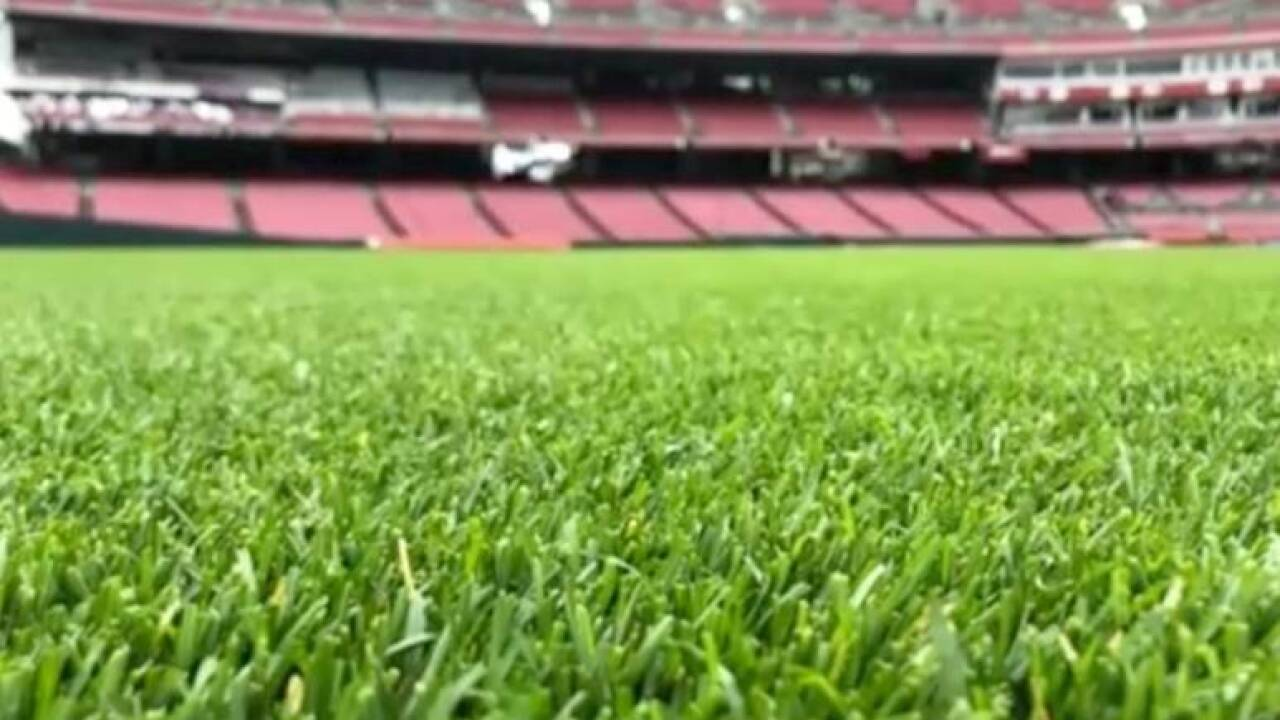 Grass_field_at_GABP.jpg