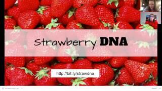 Science Sundays: Strawberry DNA