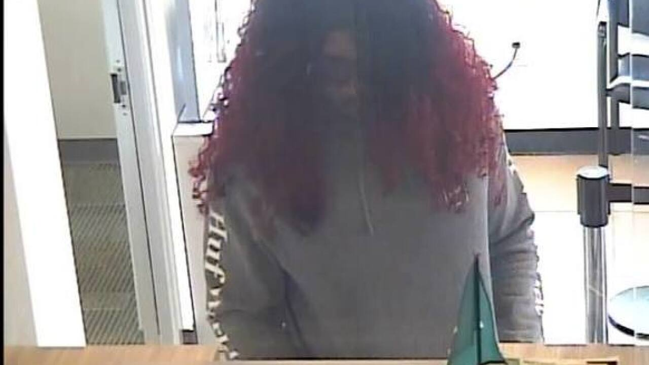 Police search for wig-wearing bank robbers