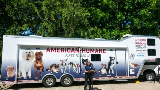 """American Humane positioned a 50"""" Truck to help with animal rescue and recovery missions in New Orleans.  Job one is getting pets reunited with their owners."""