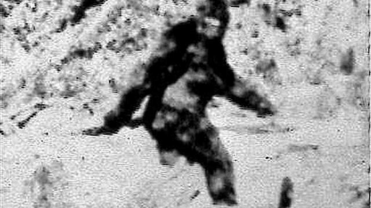 Woman sues California Dept. of Fish and Wildlife for ignoring existence of Bigfoot