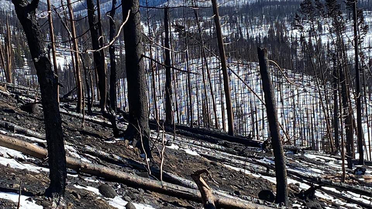 East Troublesome Fire, second-largest in Colorado history, declared 100% contained