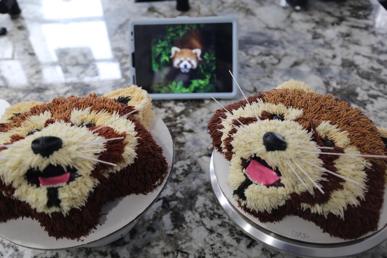 Cake art, Zohay Schwab