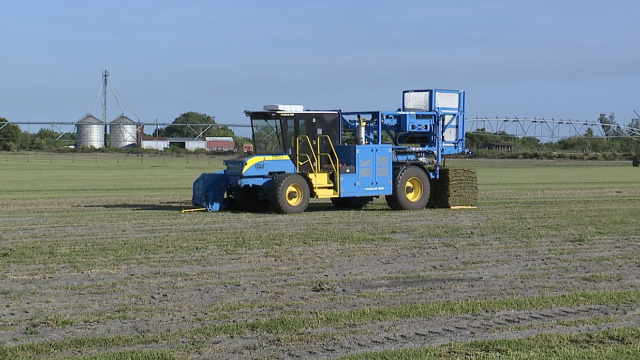 council-growers-automated-sod-harvester.png
