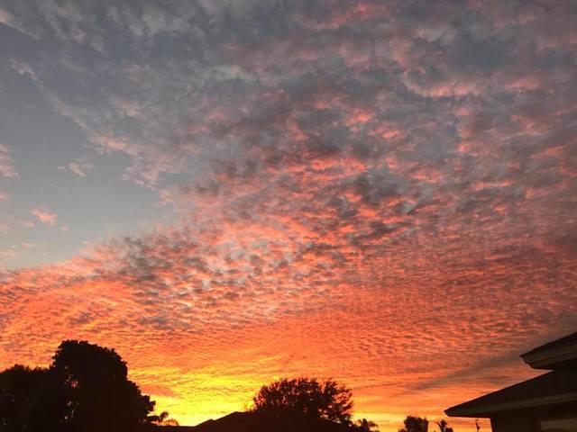 Photos: Tuesday morning's stunning sunrise