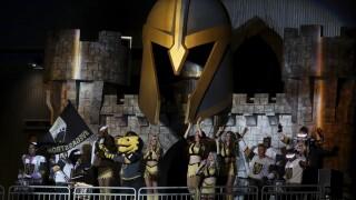 Golden Knights Evolution Hockey
