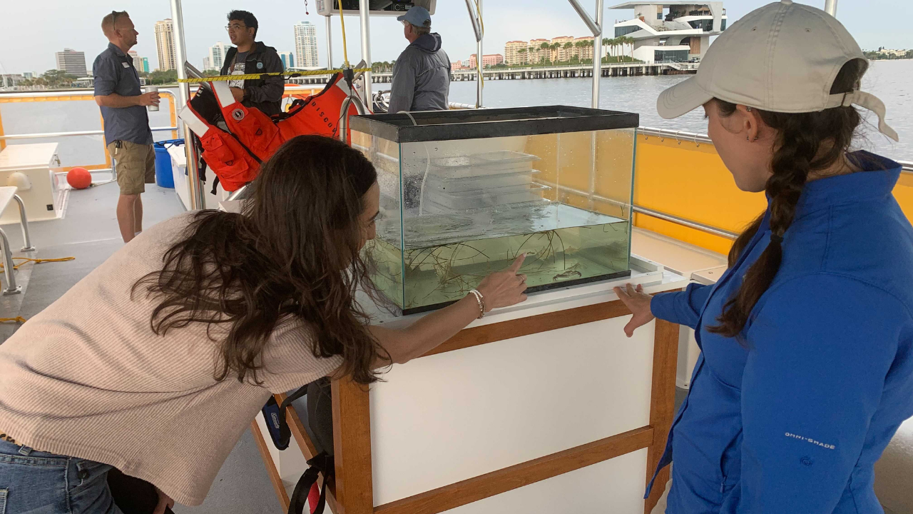 St. Pete Discovery Center Eco-Vessel tour.png