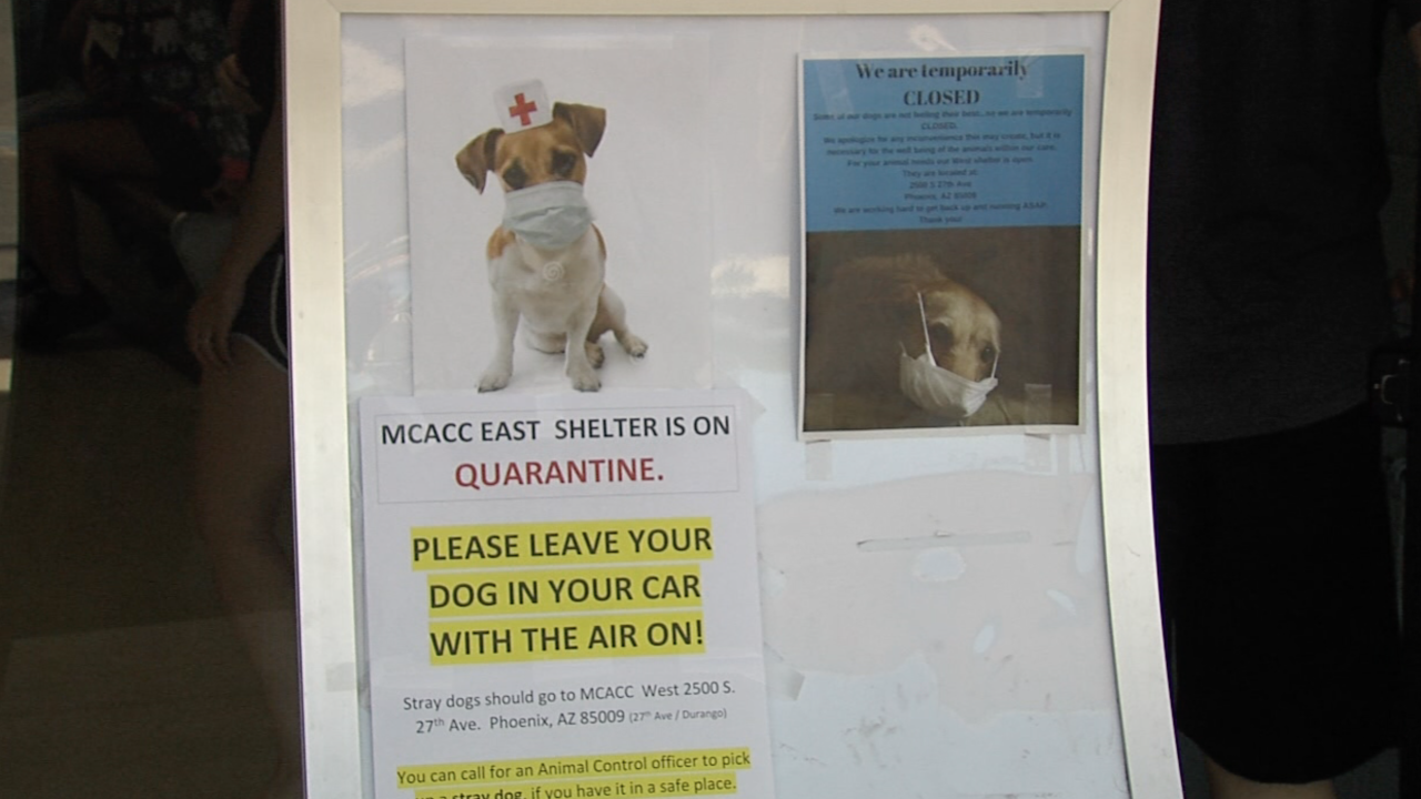 KNXV MCACC East Quarantine Maricopa County Animal Care and Control