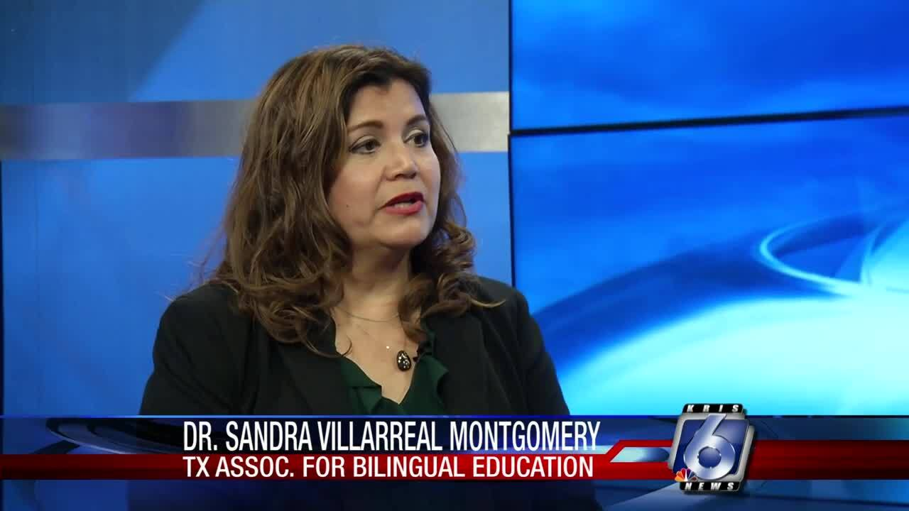Dr. Sandra Villarreal-Montgomery