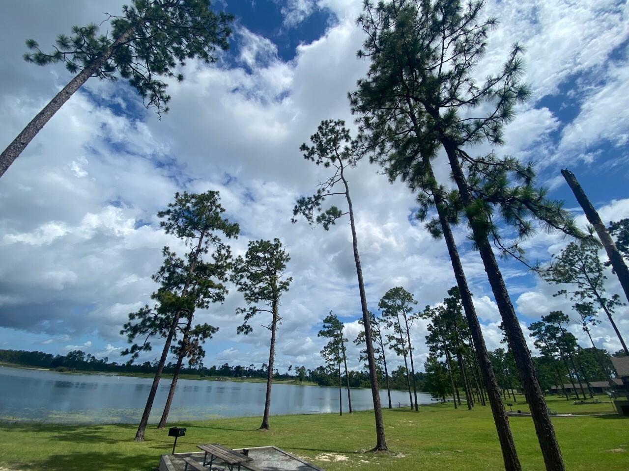 Seminole State Park trails
