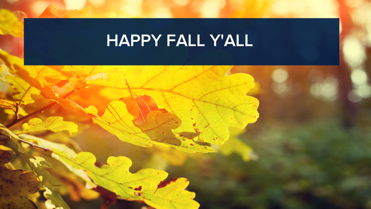 First weekend of fall panning out to be dry and warm!