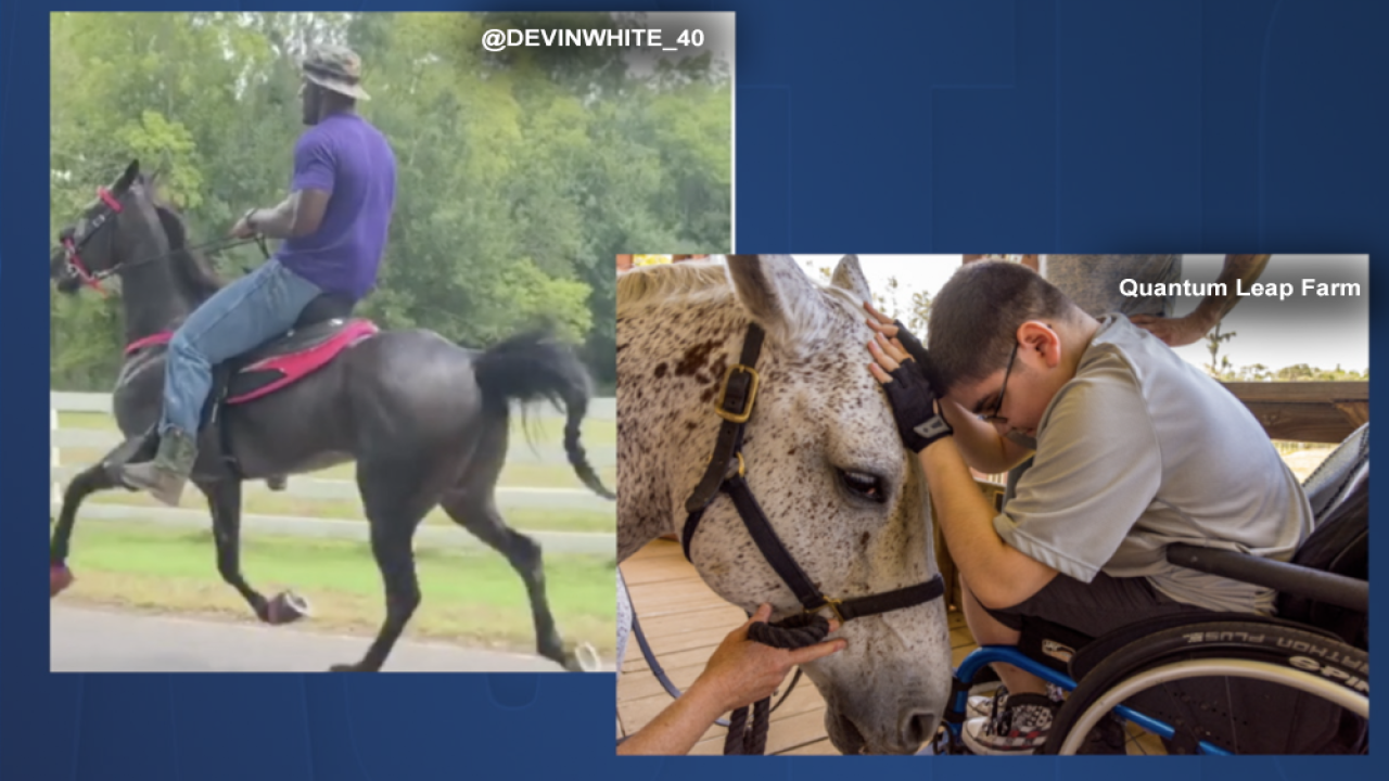 Devin White Equine Therapy