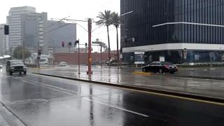 Phoenix rain