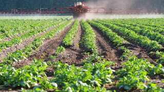 Roundup® Lawsuits: Thousands of Montana Farmers Could Be At Risk