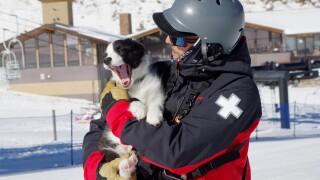 Bandit Loveland Ski Patrol 2.jpg