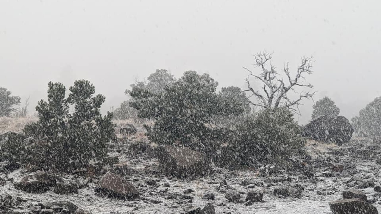 snow in south fork oct. 12, 2021.jpeg