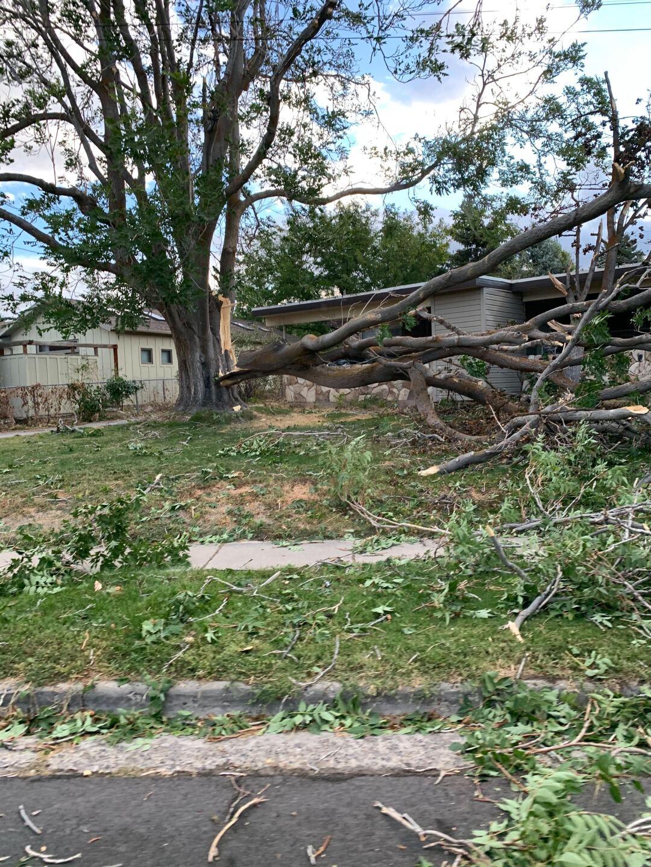 Holladay wind damage