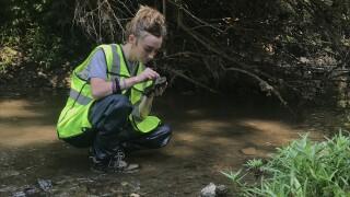 overland park stream monitoring.JPG