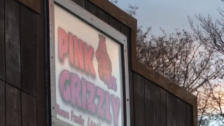 Pink Grizzly