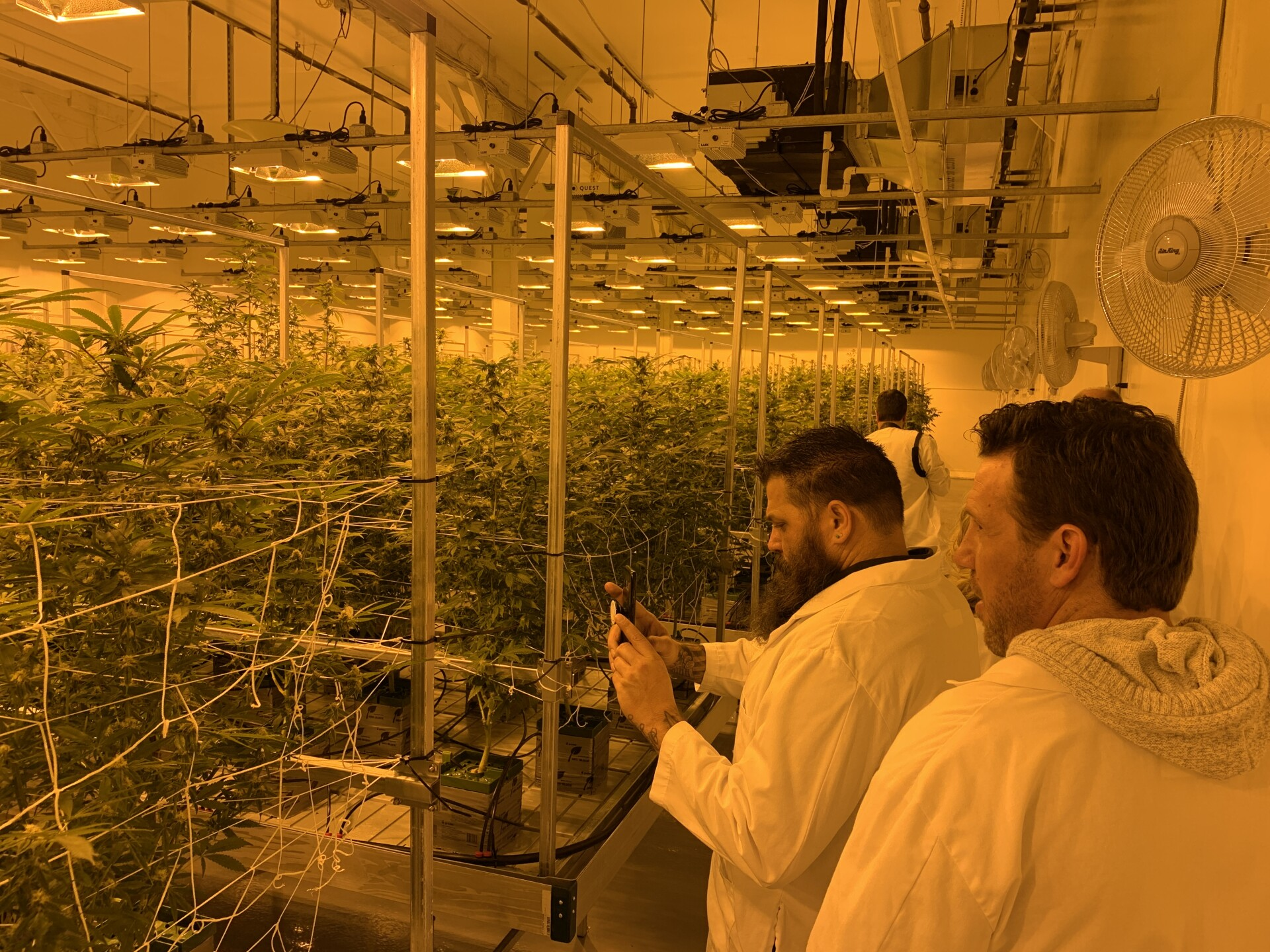 Photos: One of Utah's first medical cannabis grow facilities opens in Tooele