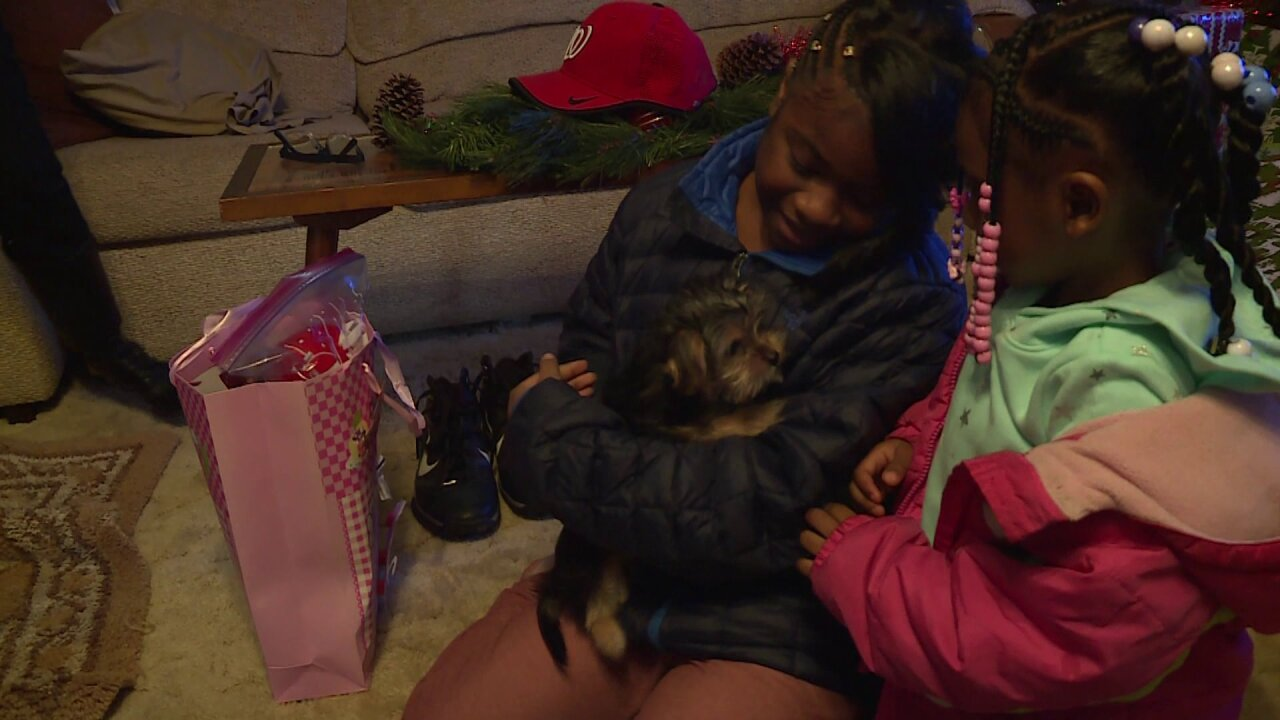 Child battling rare blood disease wins Christmas puppy