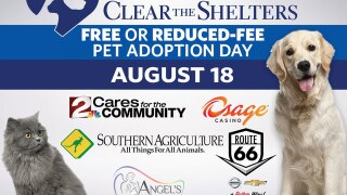 2 Works for You participating in 3rd annual Clear the Shelters event Saturday, August 18