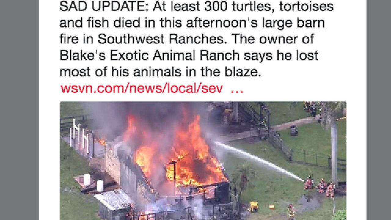 300 tortoises, hatchlings, fish killed in South Florida barn fire