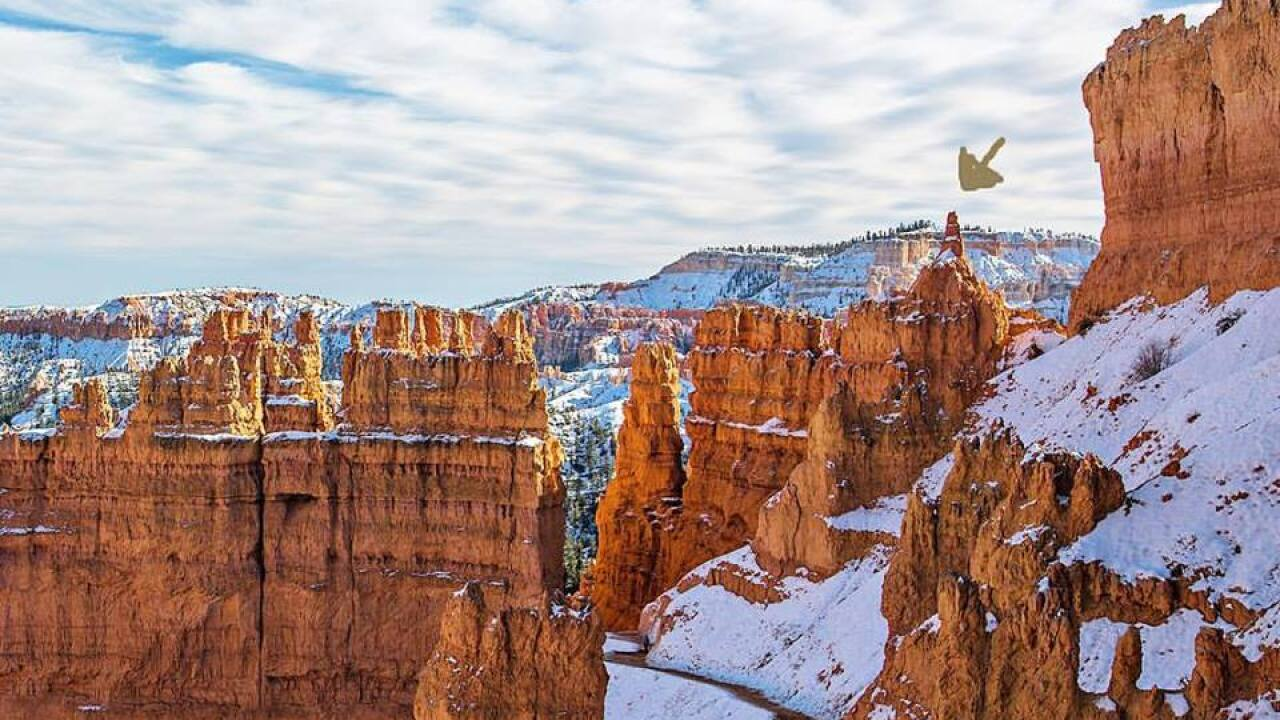 Everything you need to know to take a trip to BryceCanyon