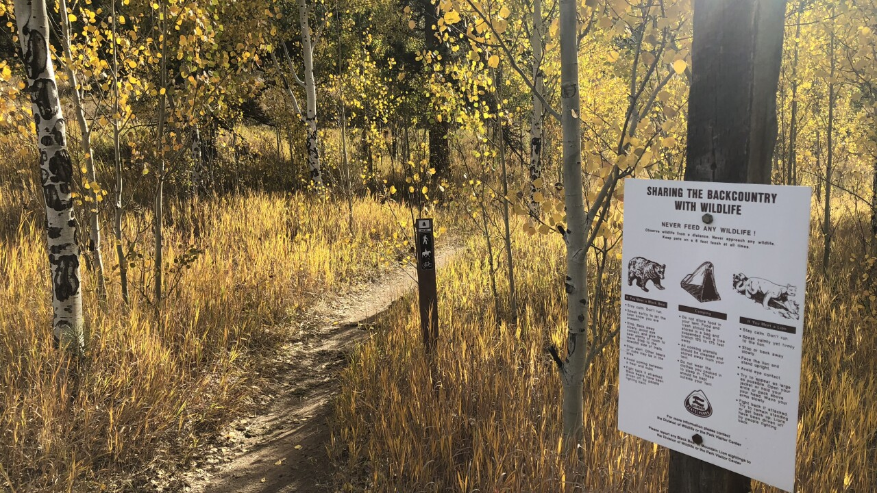 Golden Gate Canyon State Park with yellow aspens and wildlife warning sign SButzer