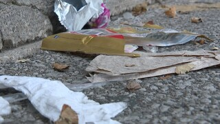 CLE experts: our local litter problem can only improve with better education