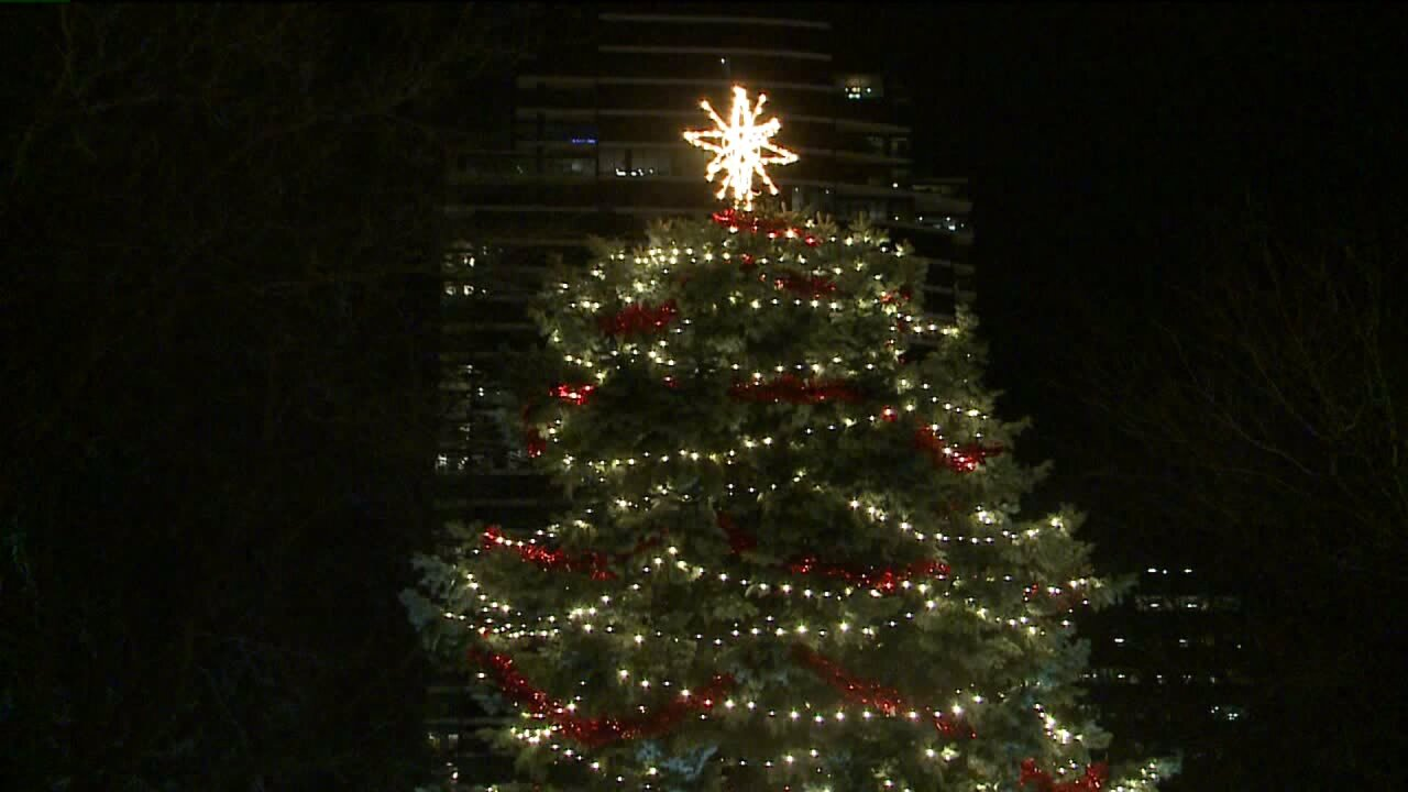 Holiday spirit at Ford Museum Christmas tree lighting