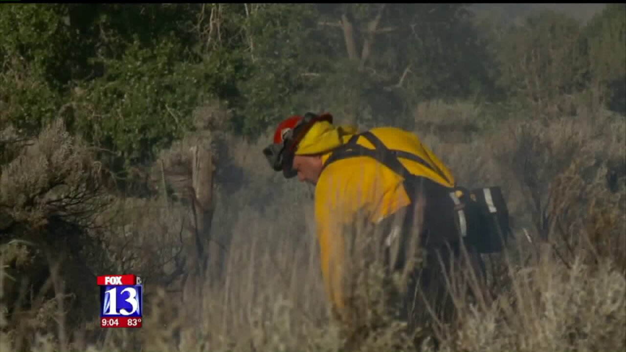 Controlled burn gets out of control in WestWeber
