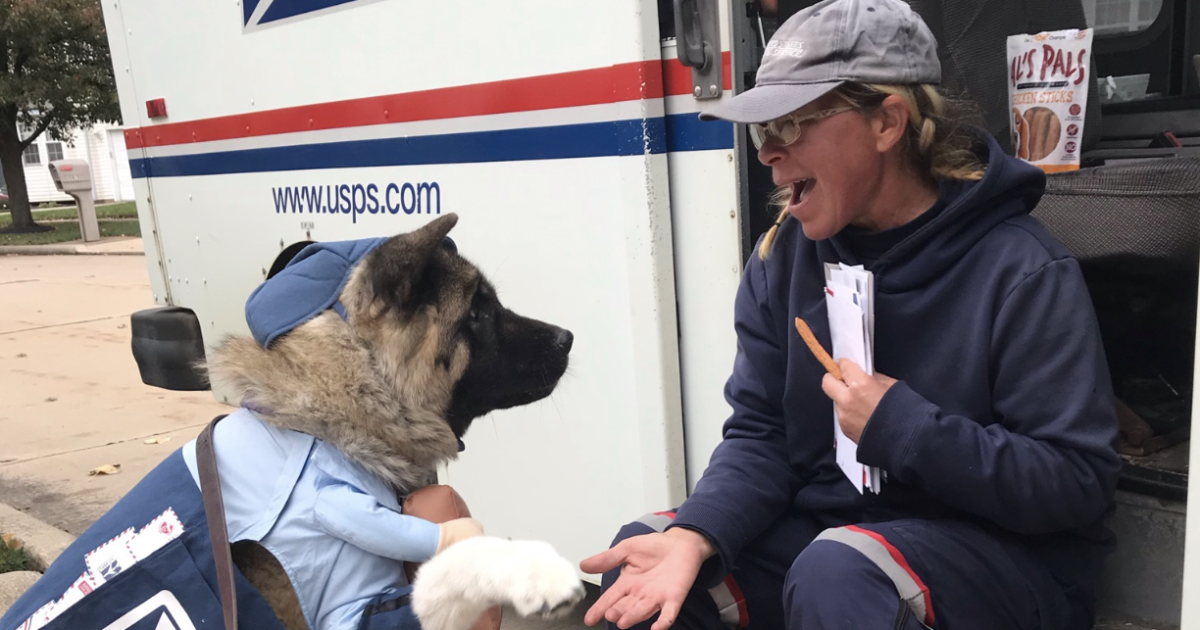 USPS mail carrier has adorable encounter with furry admirer in Cleveland
