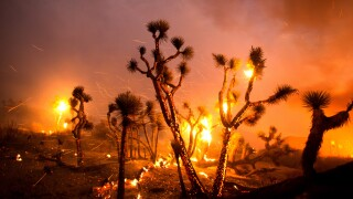 APTOPIX Western Wildfires