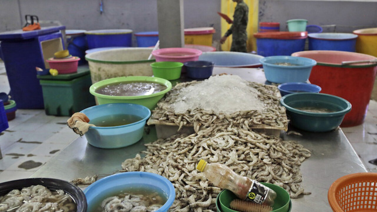 Supermarkets selling shrimp peeled by slaves