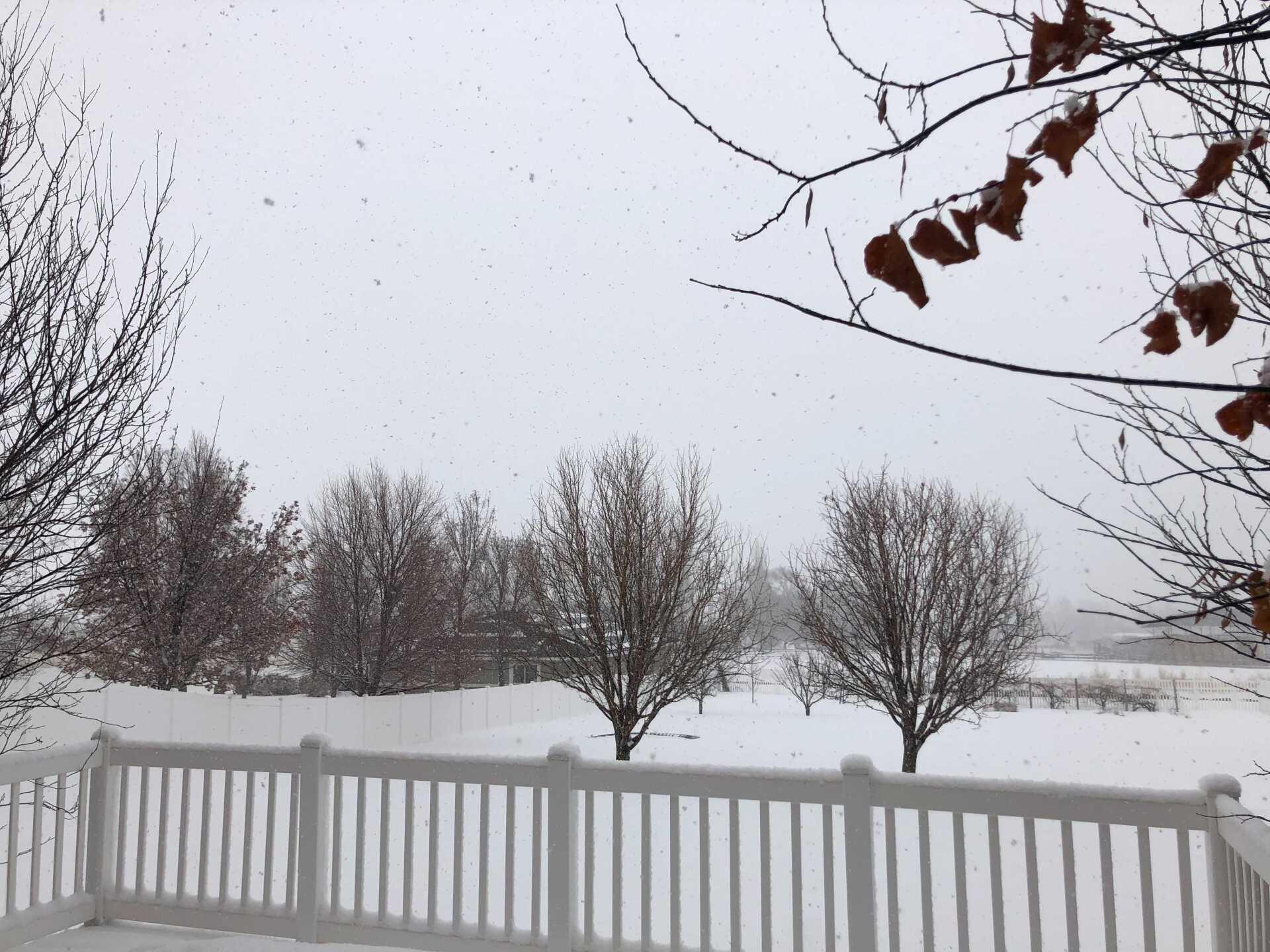 Snow Friday (7).jpg