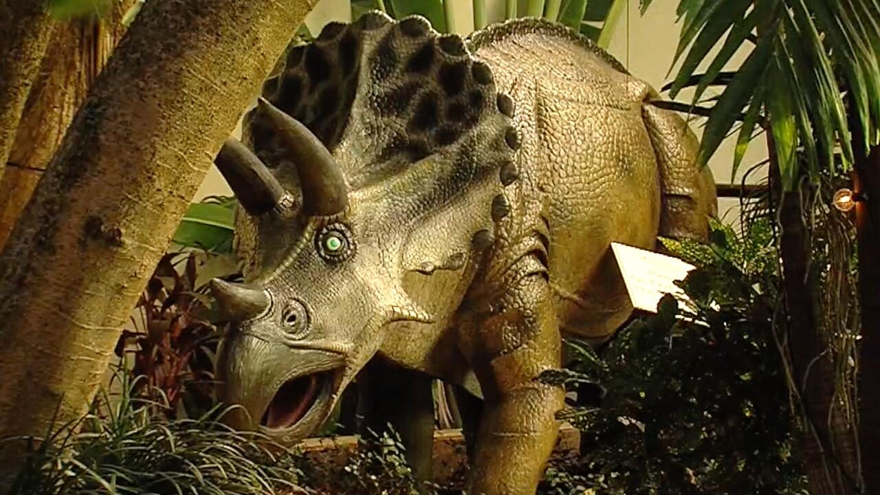 wptv-DinoSOAR-Garden1.jpg