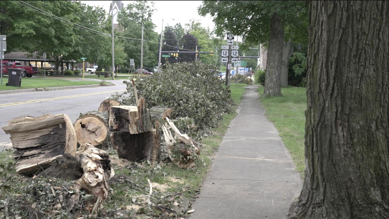 Hillsdale County storm damage