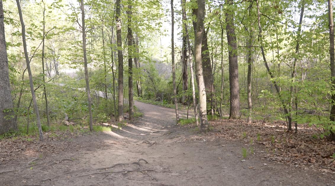 Lake Lansing Park North Trail