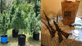 Troopers Person found with marijuana grow operation in backyard.png