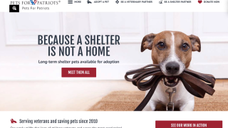 Pets For Patriots nonprofit links veterans with pets in need