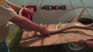 Montana Ag Network: Over 700 sportsmen search for trophy antlers near Augusta