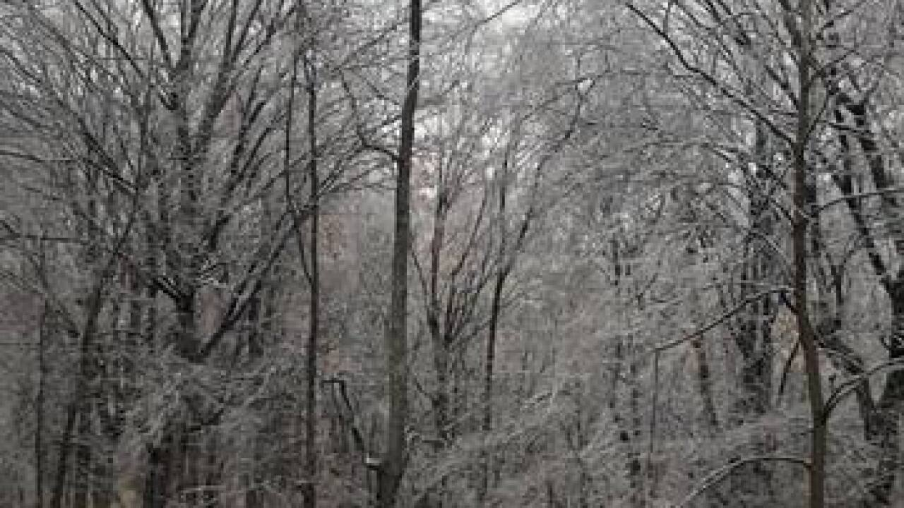 Robertson and surrounding counties lose power due to ice, down trees and power lines