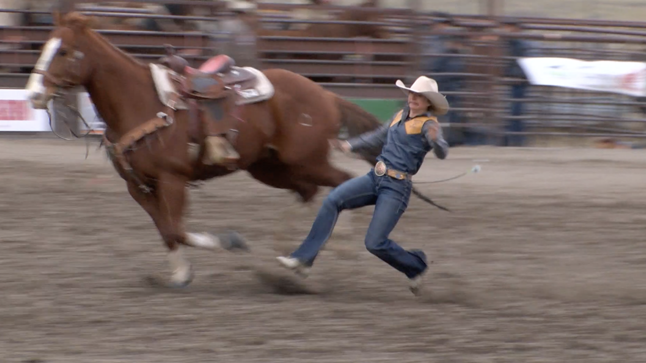 Montana State Spring Rodeo