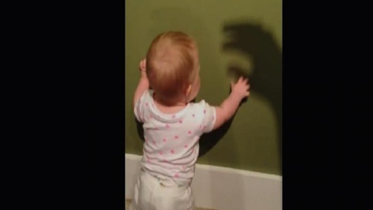 VIRAL: Shadow puppet 'bites' shocked baby