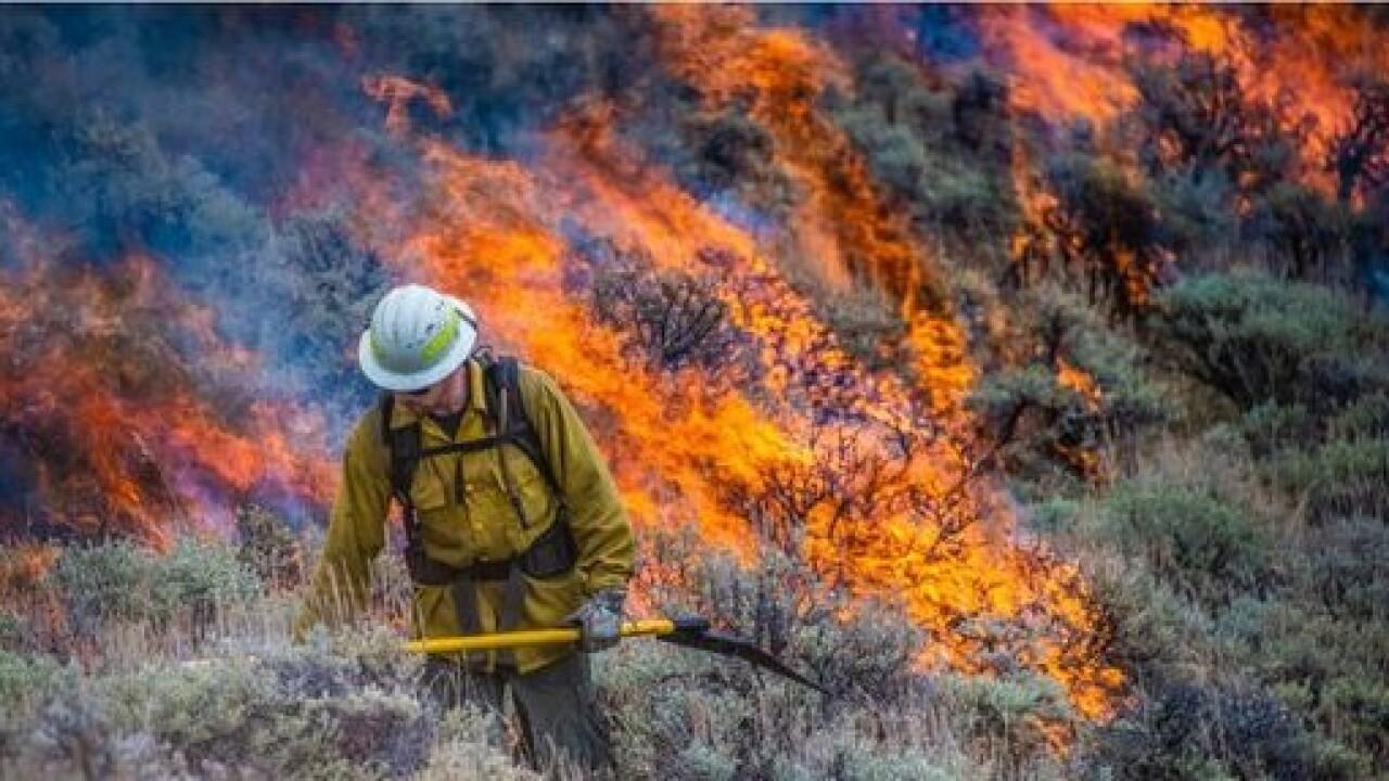 canyon mountain fire.jpg