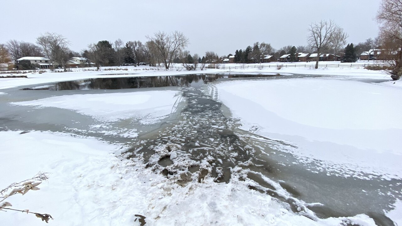woman drowns in ice trying to rescue dog